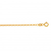 Hollow 14k Gold Rolo Chain For Men & Women Diamond Cut 1.5mm Wide